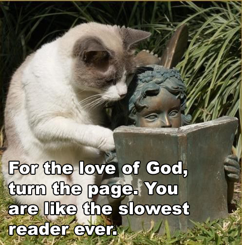 You're the Slowest Reader Ever