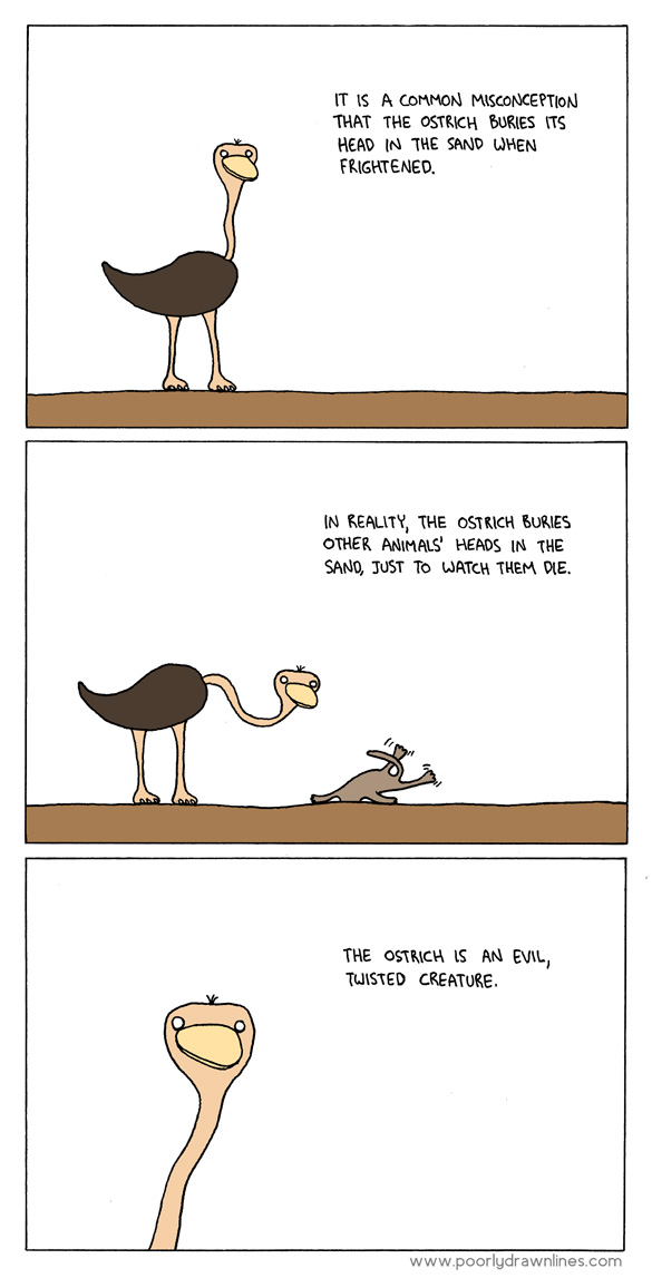 Truth About Ostrich