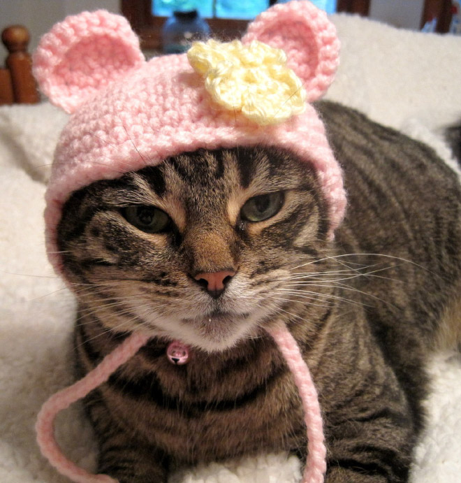 Croched Cat Hats