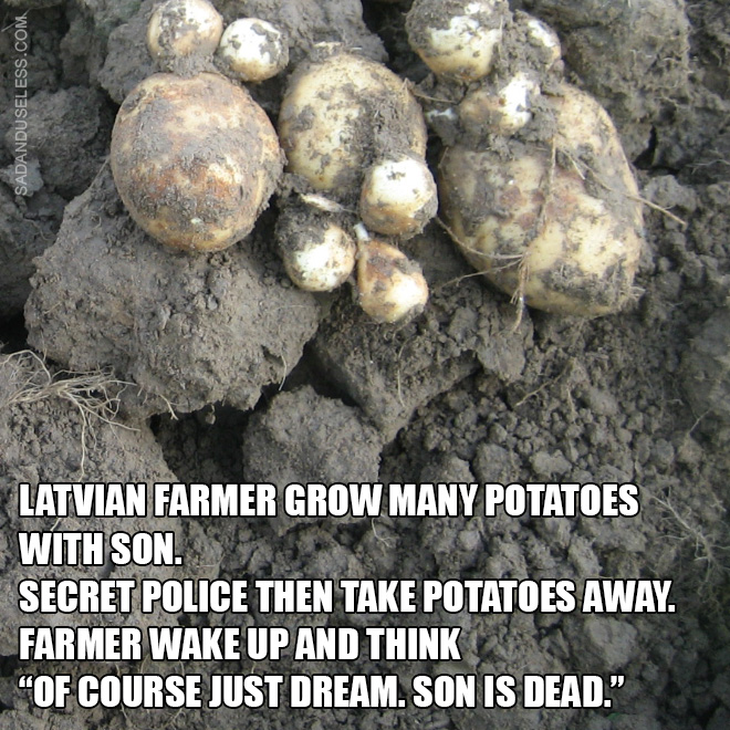 """Latvian farmer grow many potatoes with son. Secret police then take potatoes away. Farmer wake up and think """"Of course just dream. Son is dead."""""""