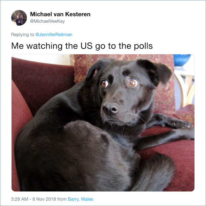 Me watching the US go to the polls...