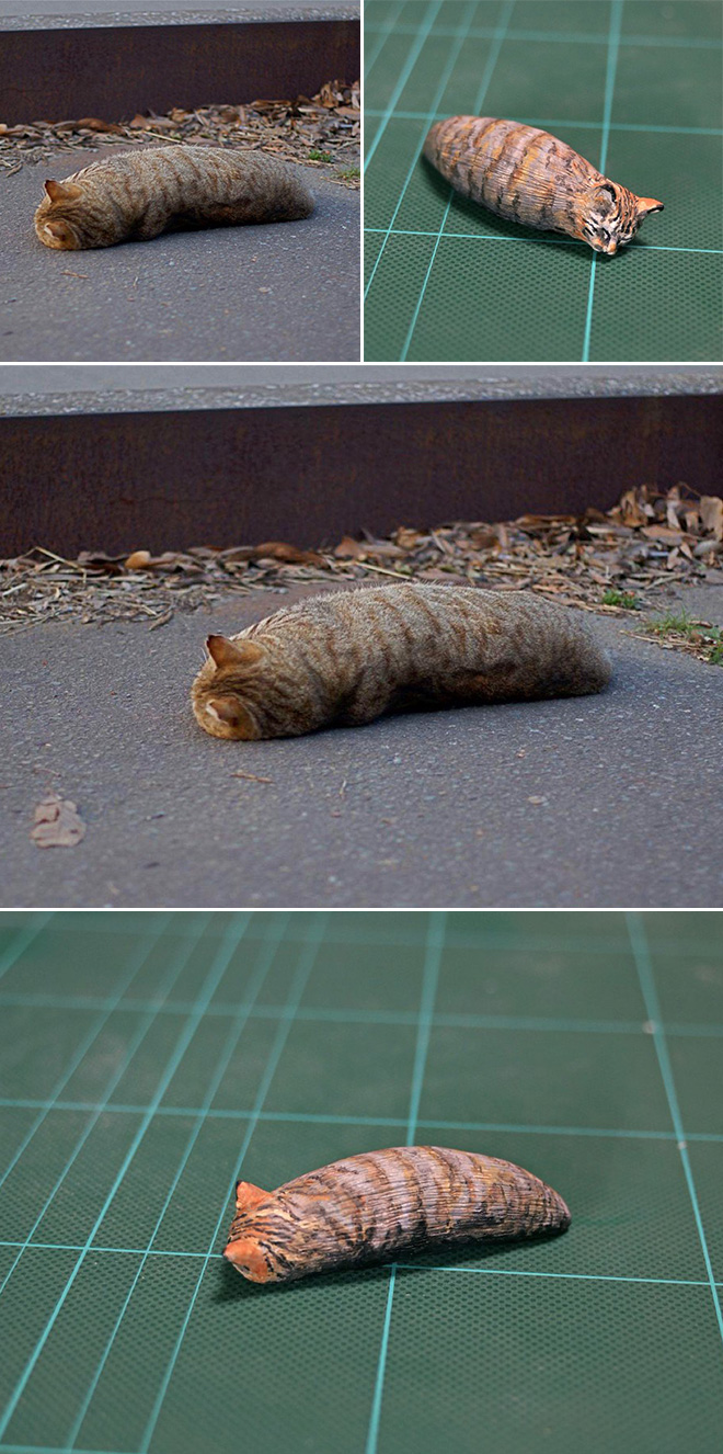 Funny cat that looks like a caterpillar sculpture.