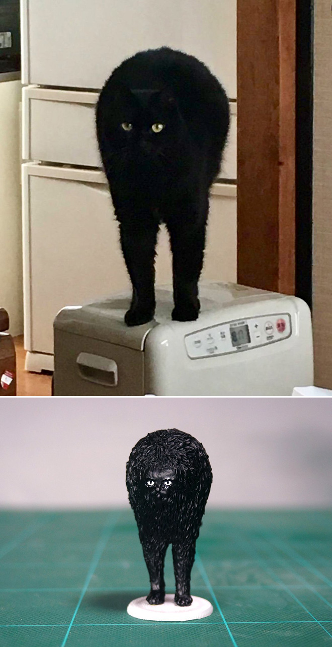 Funny standing cat sculpture.