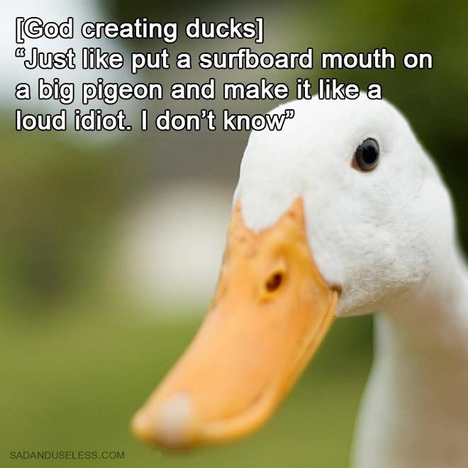 How God created ducks.