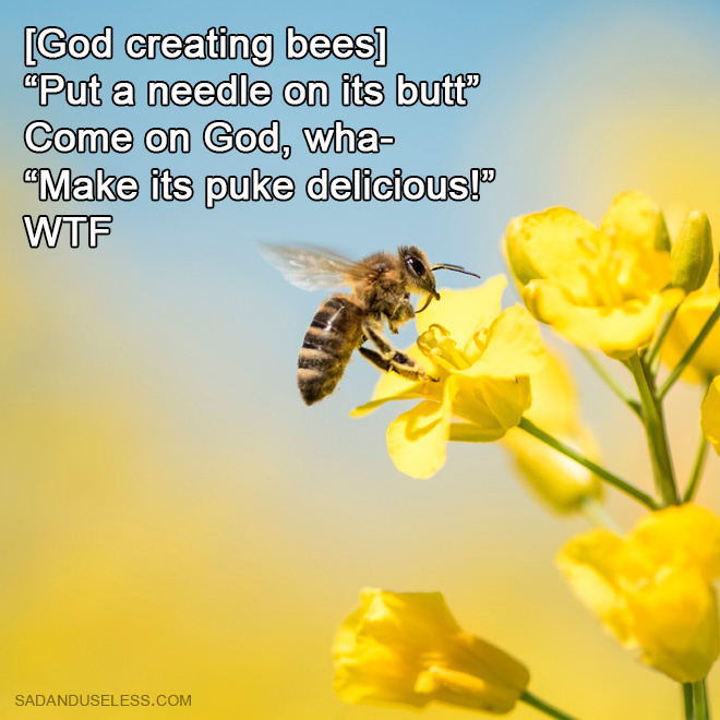 How God created bees.