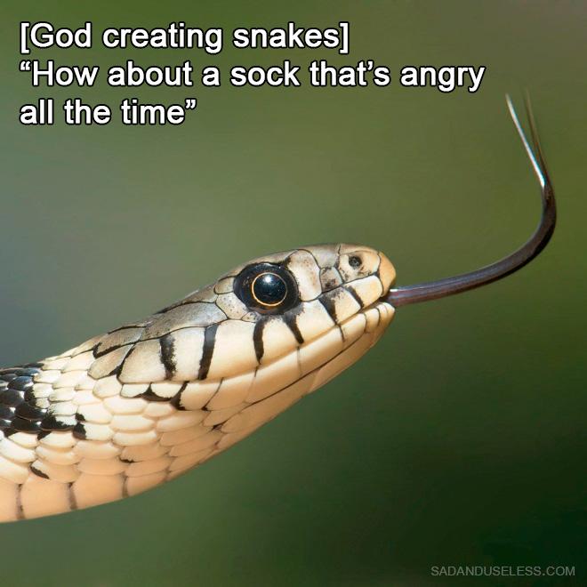 How God created snakes.