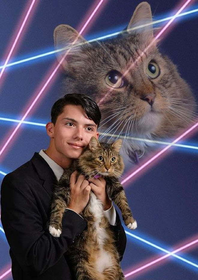 Hilarious glamour photo with a cat.