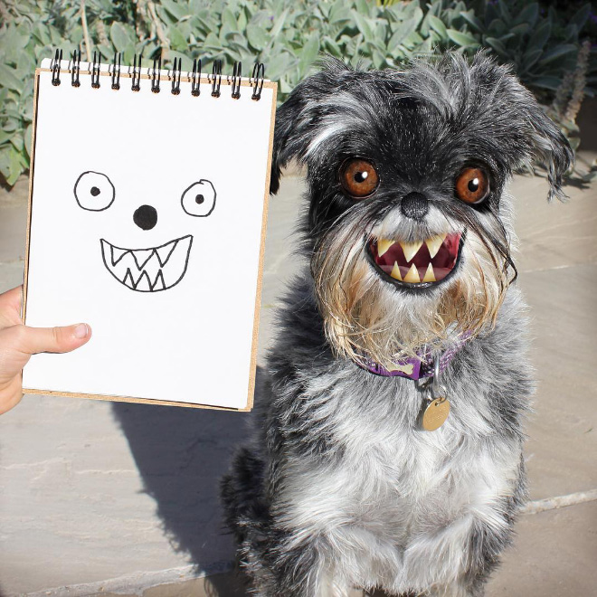 Dog doodle comes alive.