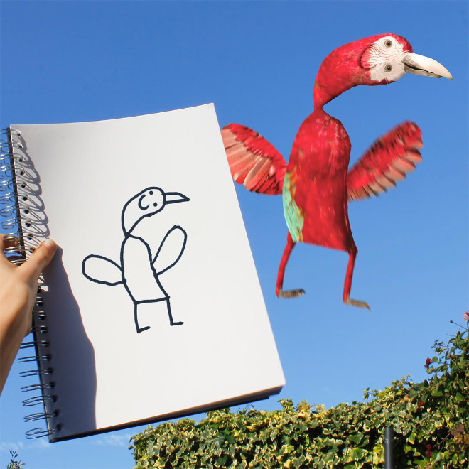 Bird doodle comes alive.