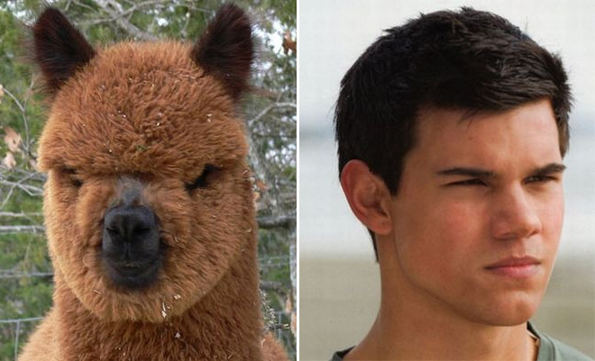 They must be twins...