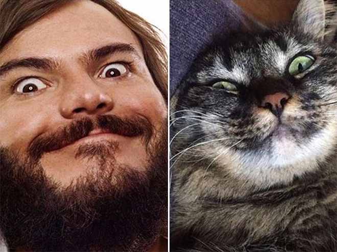 Jack Black and his cat.