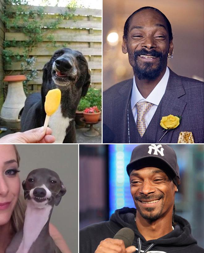 Snoop Dogg and his dog.