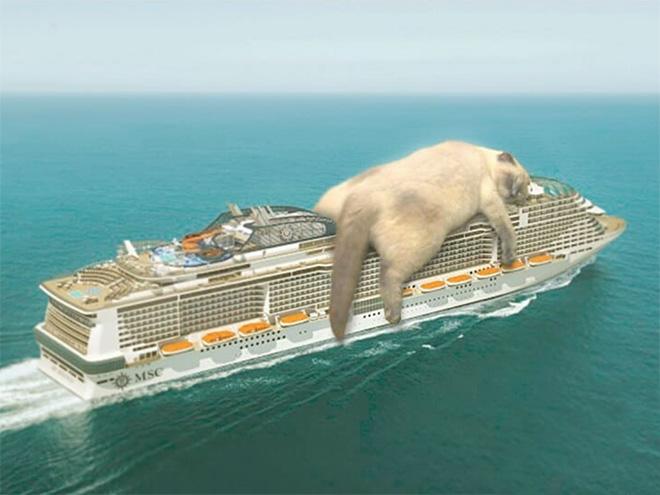 Giant cat enjoying a cruise vacation.