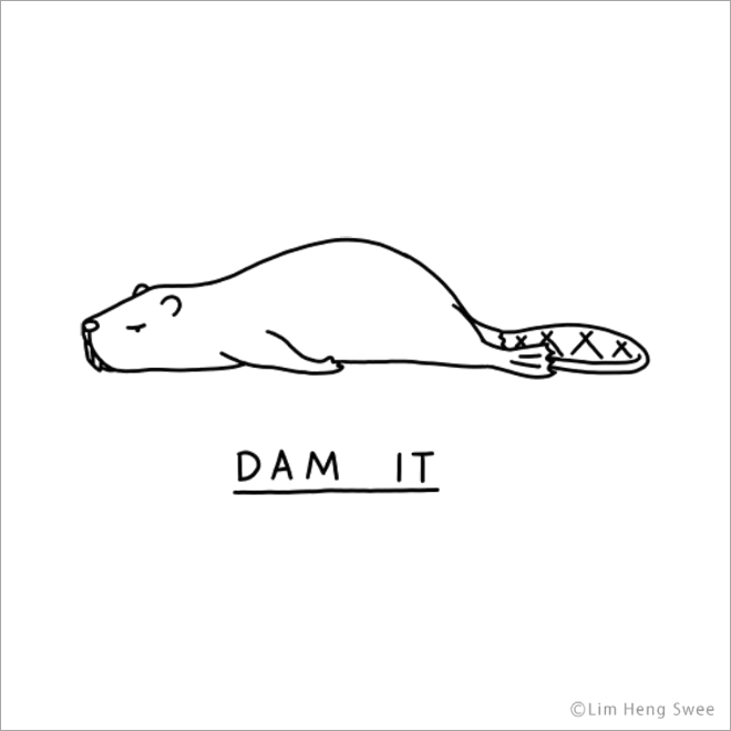 Dam it.