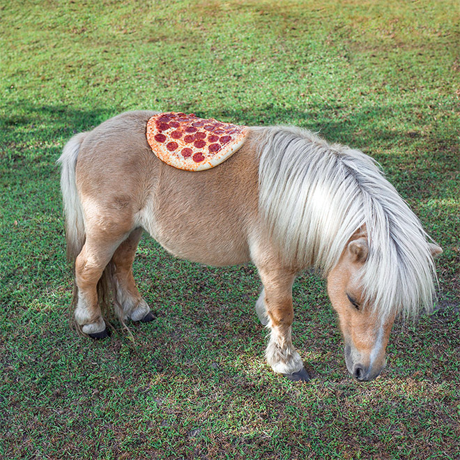 Pizza on a pony. Because art.