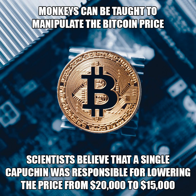 The real reason behind Bitcoin price drop.