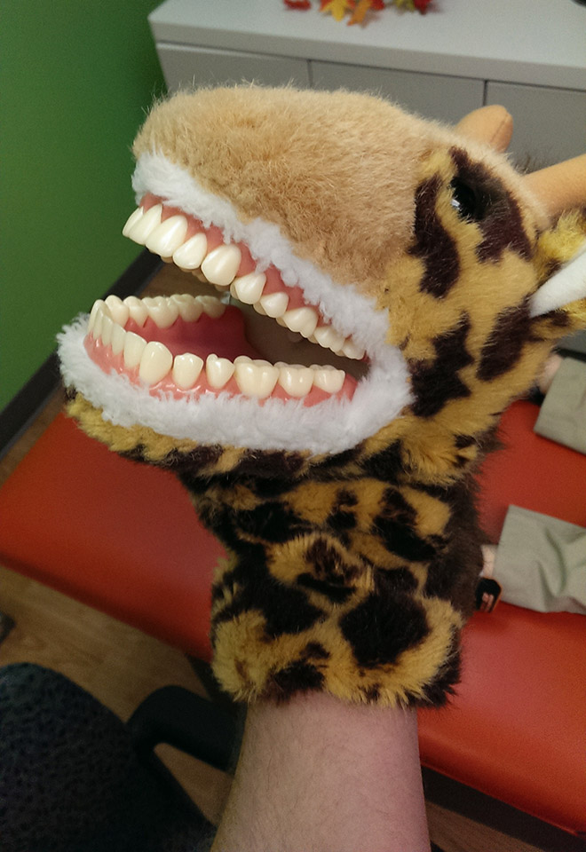 Creepy stuffed educational dentist toy for kids.