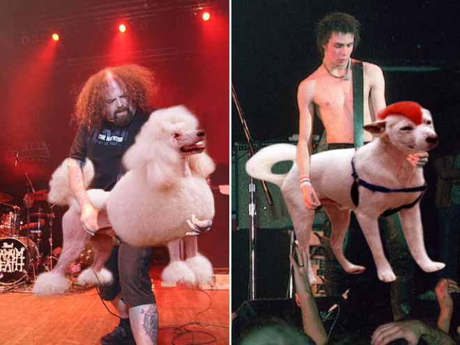 Guitars replaced with a dogs.