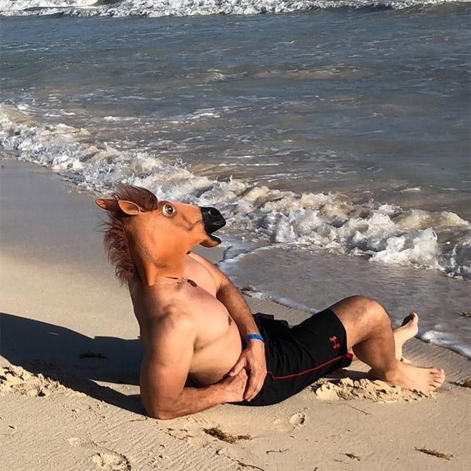 Hilarious realistic horse mask.