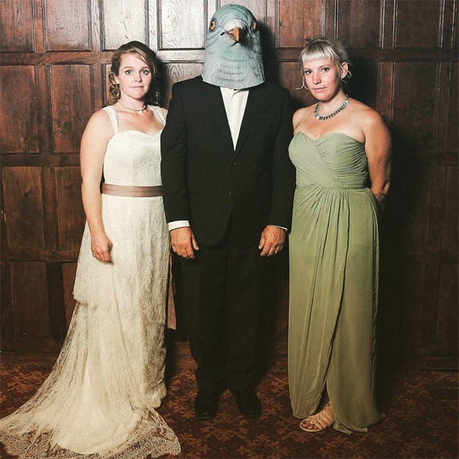 Everything is better with a pigeon mask.