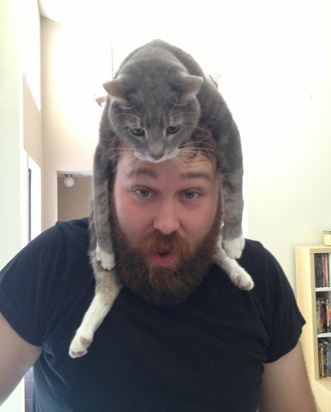 Wearing cat as a hat.