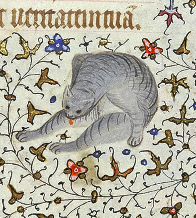 Medieval art of cat licking his butt.