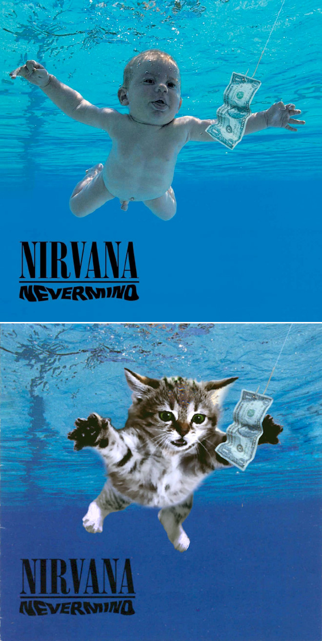 Iconic album cover recreated with kittens.