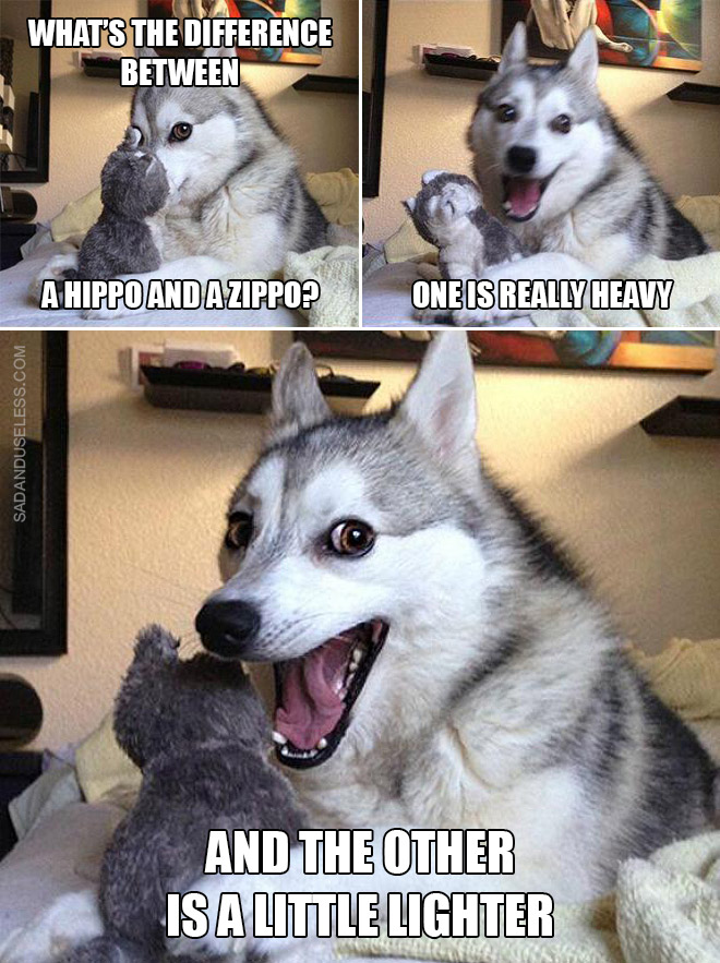 Everyone loves stupid puns, right?