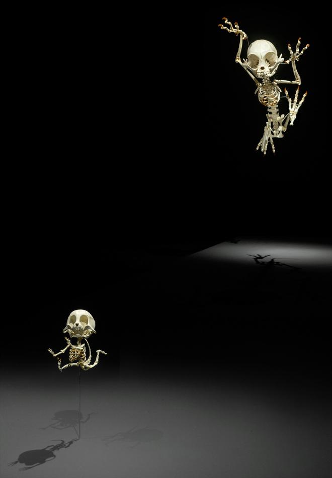 Cartoon skeletons.