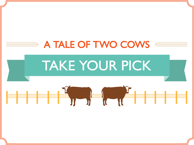 A tale of two cows.