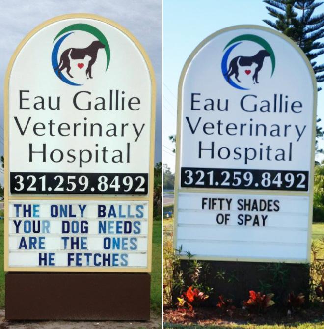 Funny vet signs.