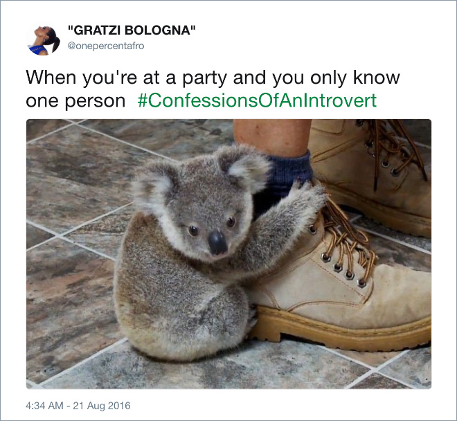 Funny tweet about introvert life.