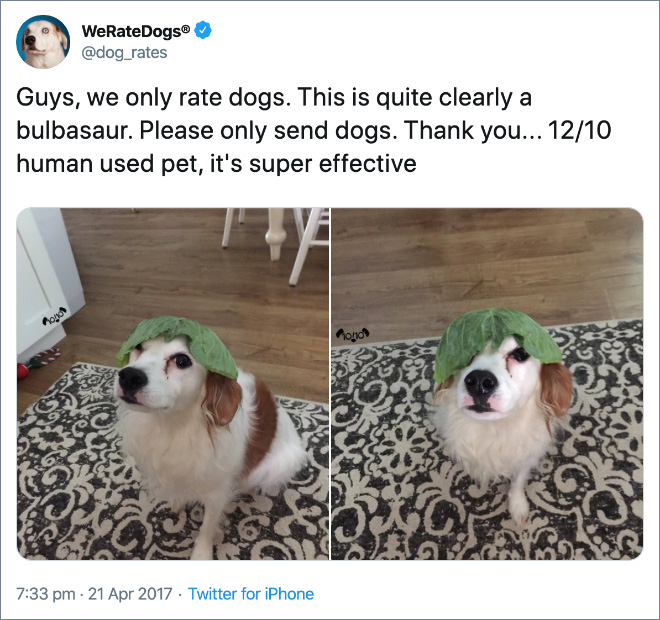 Guys, we only rate dogs. This is quite clearly a bulbasaur. Please only send dogs. Thank you... 12/10 human used pet, it's super effective