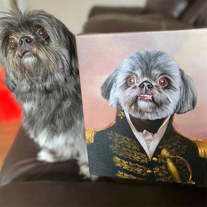 Royal pet portrait.