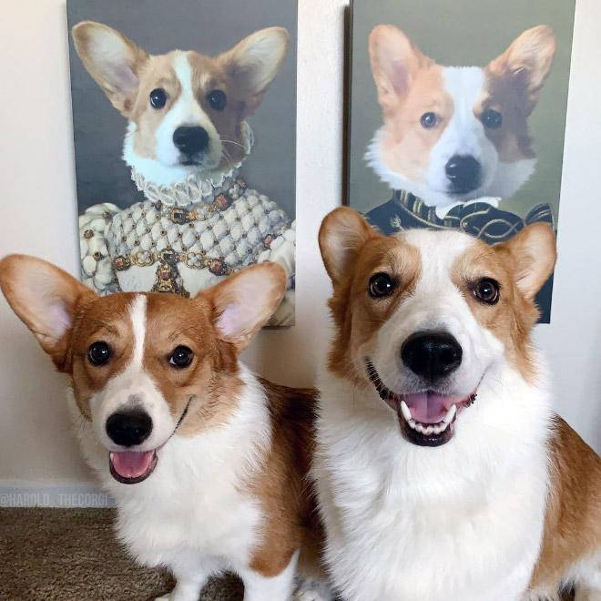 Royal pet portraits.