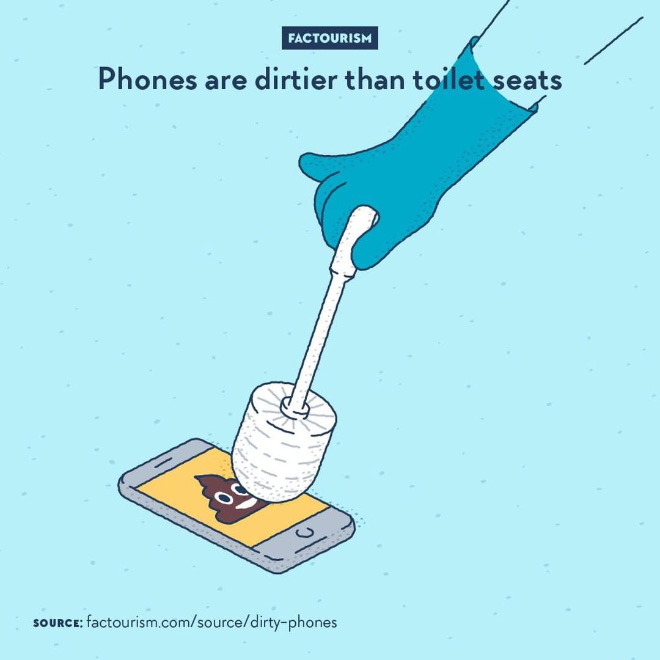 Most people don't clean their phone and most people touch about 3,000 times a day. That's a lot less cleaning and a lot more touching than what happens to a toilet seat or flush. A study found a higher amount of bacteria, yeast and mould on phones than on toilets. Keyboards, mice and trackpads are also concerned.