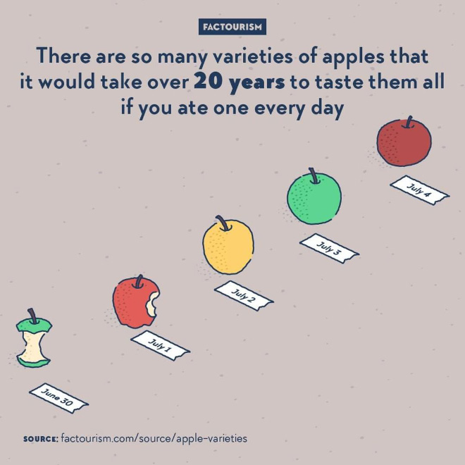 We know more than 7,500 cultivars of apples. Some are good for eating, others are better for cider, jelly, or ornamentation, certain are quite old and not fit for mass production.