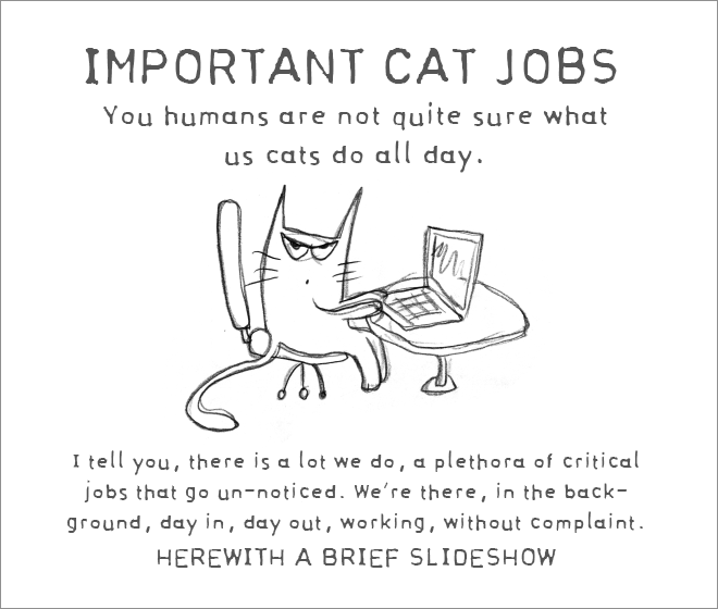 Important cat jobs.