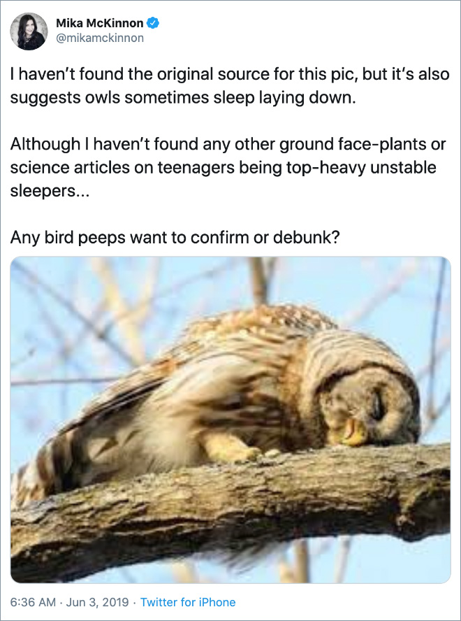 I haven't found the original source for this pic, but it's also suggests owls sometimes sleep laying down. Although I haven't found any other ground face-plants or science articles on teenagers being top-heavy unstable sleepers... Any bird peeps want to confirm or debunk?