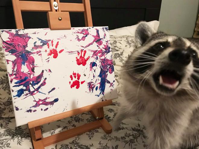 Raccoon painting.