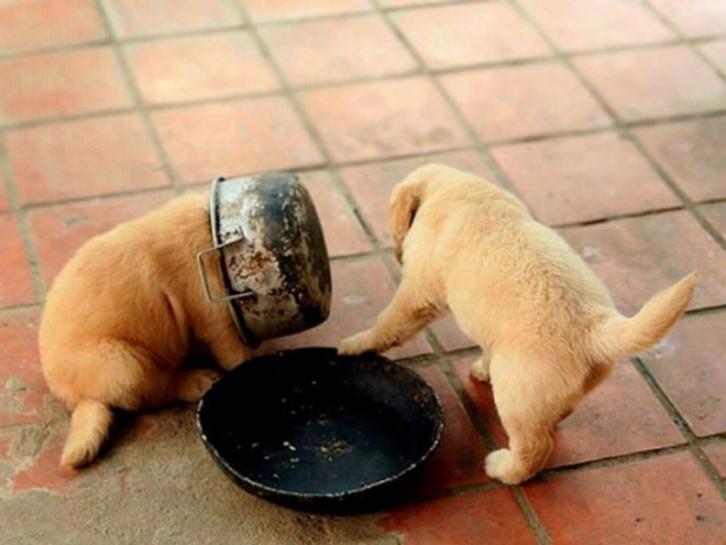 Stuck while eating.