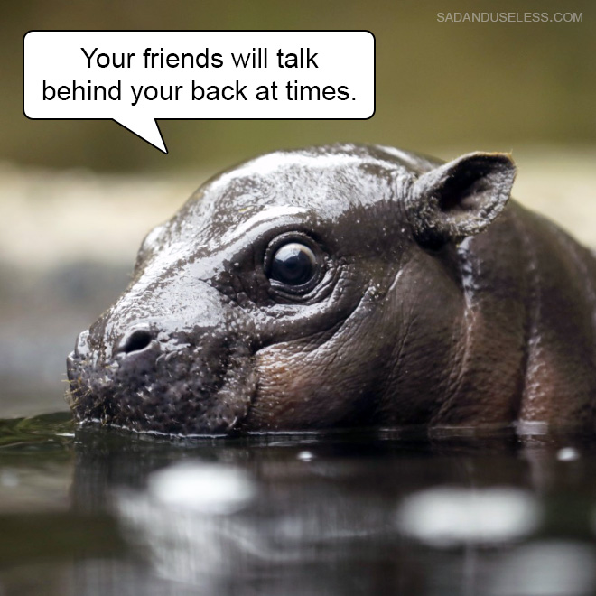 Your friends will talk behind your back at times.