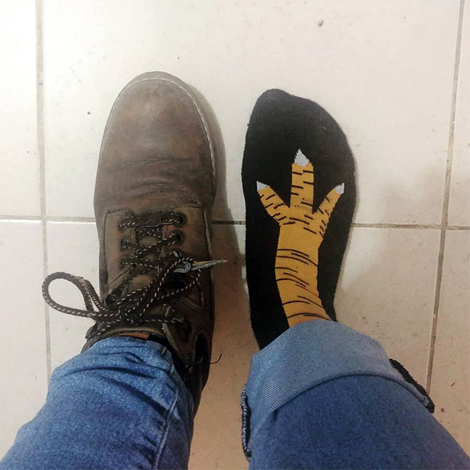Chicken leg socks.