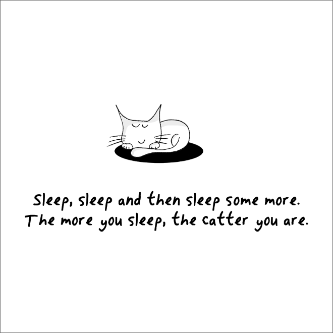How to be a cat.