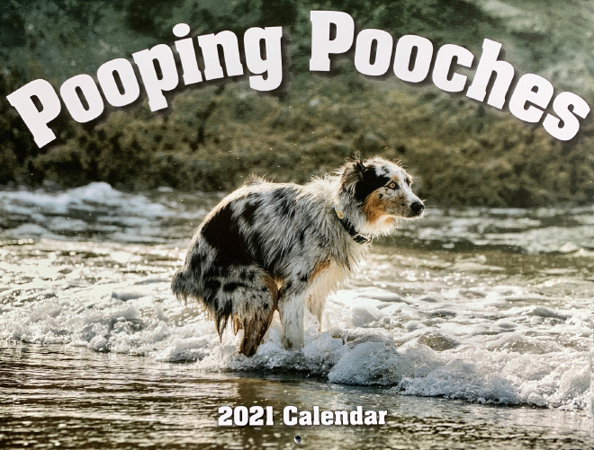Pooping Pooches 2021 calendar is finally here!