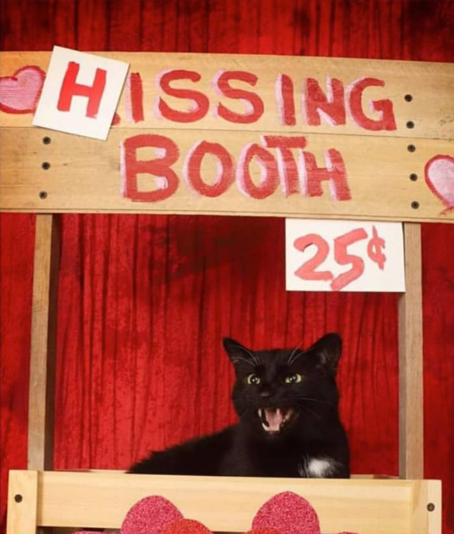 Hissing booth.