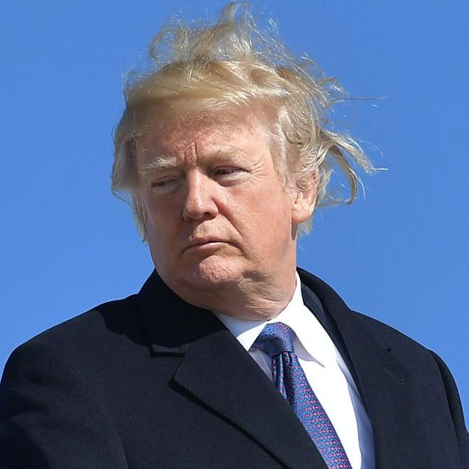 Trump vs. wind.
