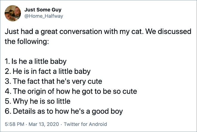 Just had a great conversation with my cat.