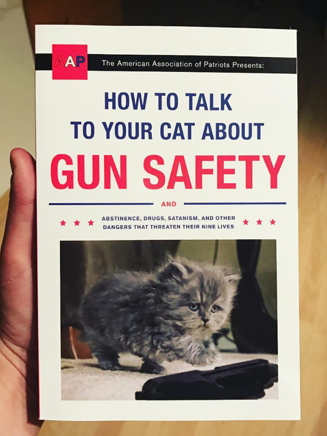"""""""How To Talk To Your Cat About Gun Safety"""" by Zachary Auburn"""