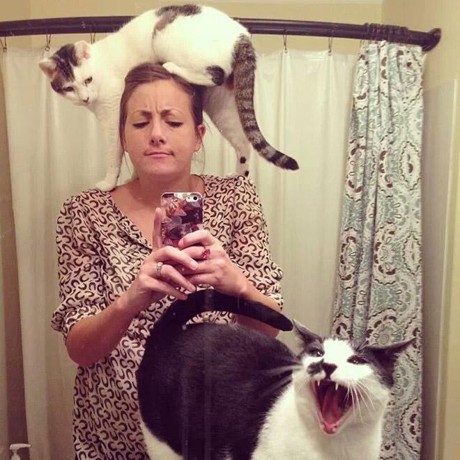 Cat selfie fail.